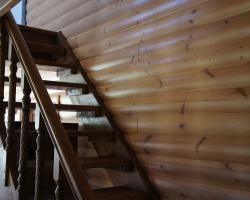 Удачный цвет окраски деревяной лестницы